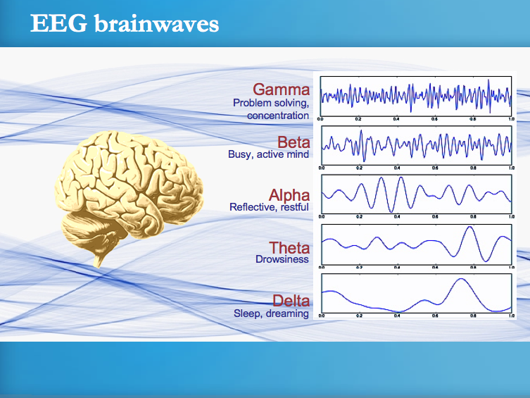 EEG Brain Waves
