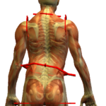 Postural Analysis with Massage Olympia WA